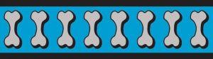 Vodítko reflexní Red Dingo Bones 15mm x 1,8m - tyrkysové