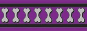 Vodítko reflexní Red Dingo Bones 25mm x 1,8m - fialové