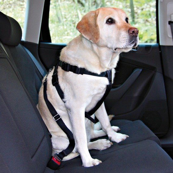 Bezpečnostní postroj do auta pro psa M 50-70cm Trixie