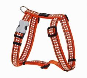 Postroj reflexní Red Dingo Bones 25mm x 56-80cm - oranžový