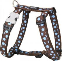 Postroj se vzorem Red Dingo 25mm x 56-80cm - Blue Spots on Brown