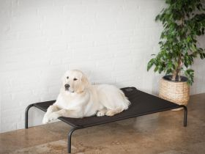 Lehátko pro psa IRON - černá