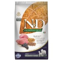 N&D Ancestral Grain Dog Adult M/L Lamb & Blueberry 12 kg