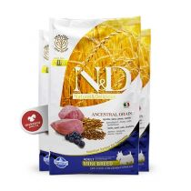 N&D Ancestral Grain Dog Adult Mini Lamb & Blueberry 2,5 kg