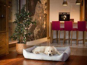 Pelíšek pro psa Economy - světle šedý ekolen