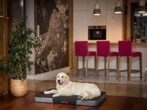 Matrace pro psa Premium Cordura - černá a šedý ekolen