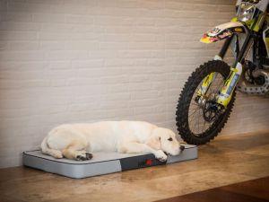 Matrace pro psa Premium - šedá ekolen